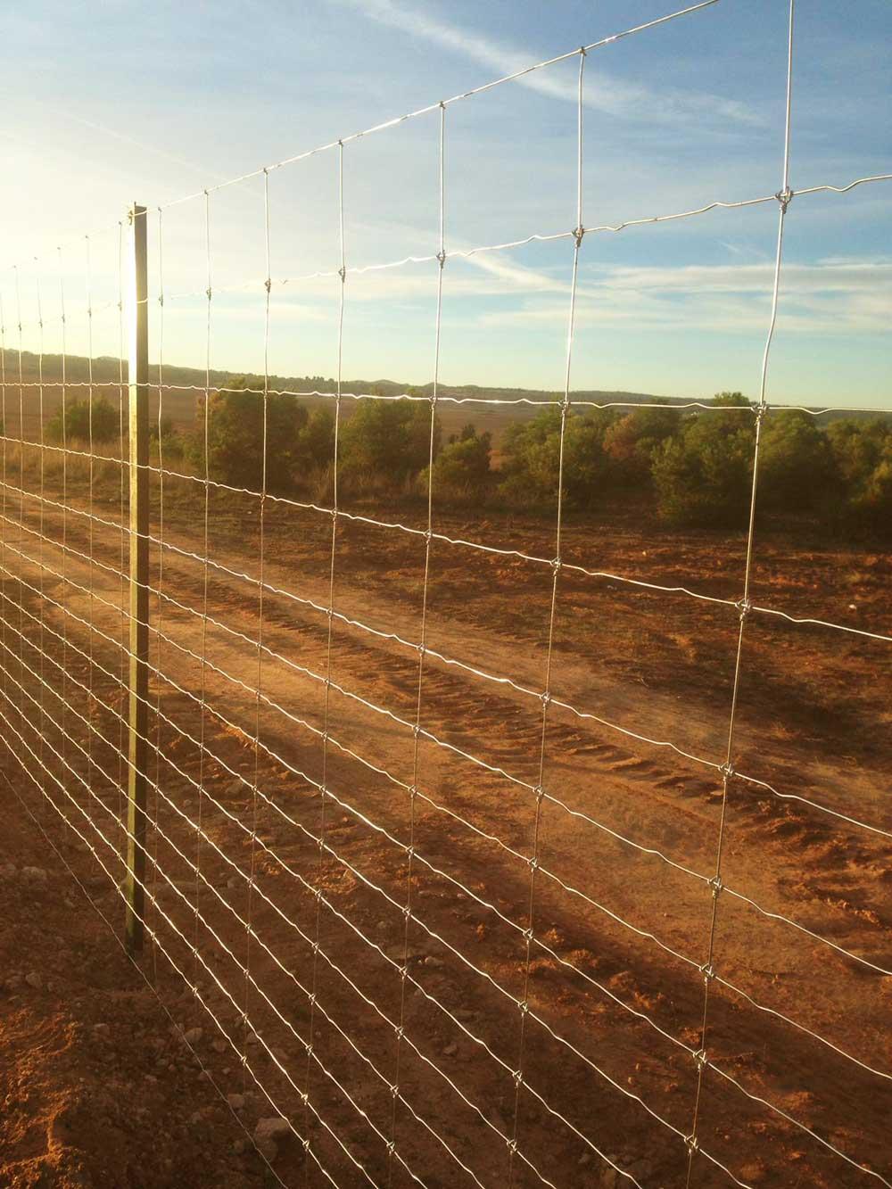 Cerramiento realizado en Cancarix, Albacete