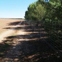 Vallado cinegético en Albacete | Cerralba