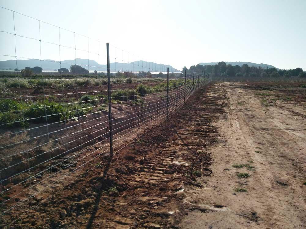Vallado de finca agrícola en Albacete