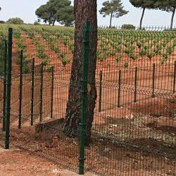 Cerramiento Hércules Quintanar del Rey en vivero forestal | Cerralba Cuenca