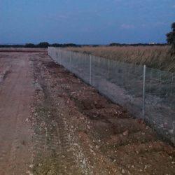 Vallado para la protección contra jabalíes en plantación de trufa provincia Cuenca.