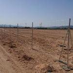 Malla cinegética en parque solar Valencia