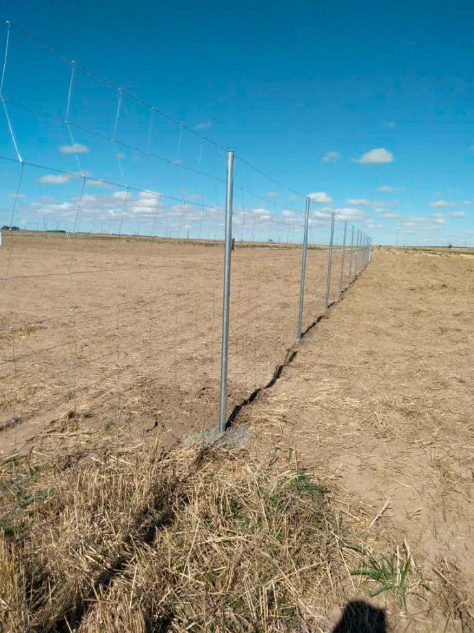 Instalación de un vallado cinegético en una planta solar en Teruel